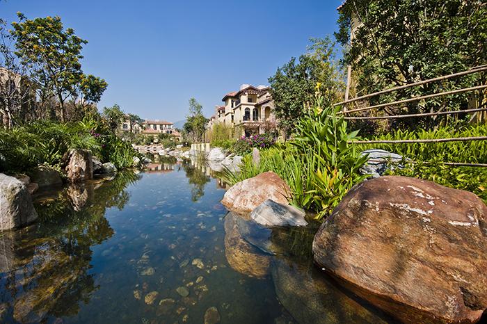 700多亩森林温泉spa公园,五星级酒店,山地自行车公园,森林步道公园